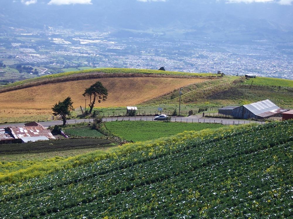 road-in-farming-field-1381288.jpg